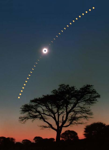برای این منظرهی عالی از خورشیدگرفتگی ژوئن ۲۰۰۱ در زامبیا دو دوربین به کارگرفتهشدهاست.یکی از دوربینها نمایی از درخت و خورشیدگرفتگی کامل را ثبتکردهاست و دیگری به ثبت خورشیدگرفتگی جزئی با فاصلهی ۵ دقیقه بین هر شات پرداختهاست.عکس از:Fred Espenak