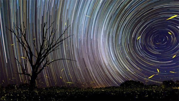این عکس ترکیبی از ۳۵۰ عکس مستقل میباشد که در زمانی نزدیک ۳ ساعت به ثبت رسیدهاست.رد ستارگان دورقطبی در کنار درخشش شبتابها نمایی زیبا پدیدآوردهاست.عکس از:Brandon Giesbrecht