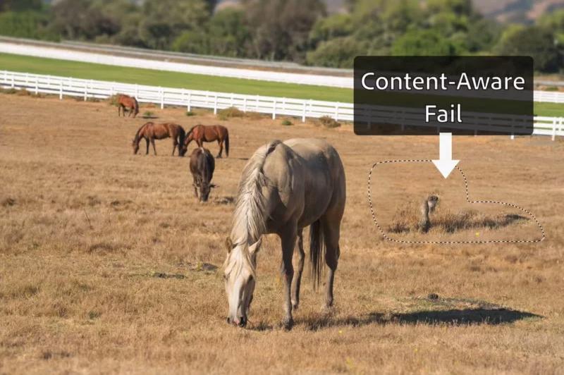 فوتوشاپ Content-Aware Fill